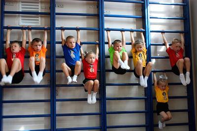 Физическая культура и спорт: теория и методика преподавания в образовательной организации