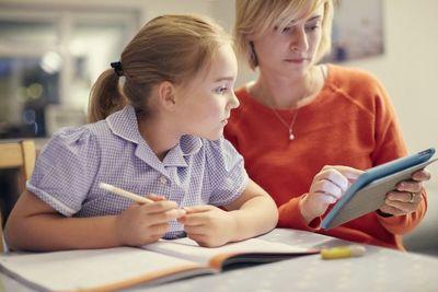 Особенности организации образовательной деятельности при домашнем обучении