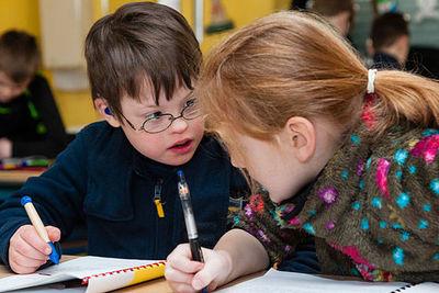 Теория и практика инклюзивного обучения в образовательной  организации в условиях реализации ФГОС